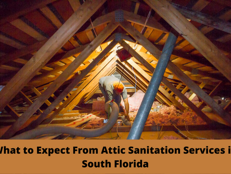 What to Expect From Attic Sanitation Services in South Florida