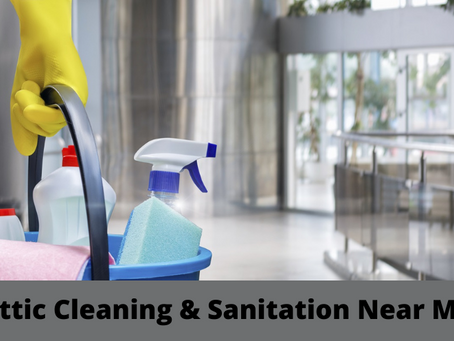 Attic Cleaning & Sanitation Near Me