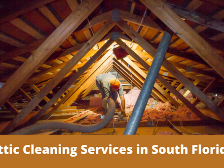 Professional Attic Cleaning Services in South Florida