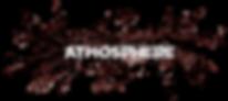 Atmosphere.png