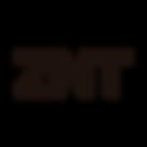 ZNT - Logo-1.png