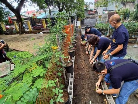 Urban Farming sa Marilag