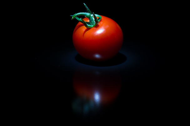 single tomato (17 of 18).jpg