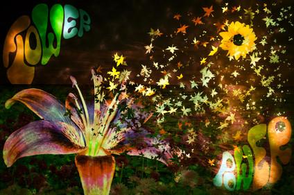 flowerpower small.jpg