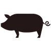 icon-pig.png