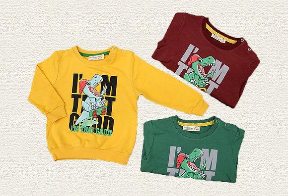 12 Pack Toddler Boys Sweatshirt (0y-3y) - £2.40