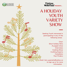 Holiday Variety Show - Call Out
