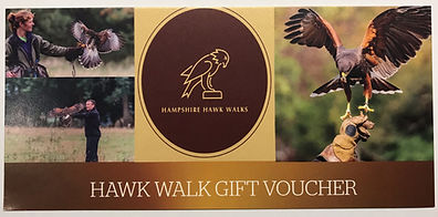 A gift voucher from Hampshire Hawk Walks located in Chawton House in Hampshire