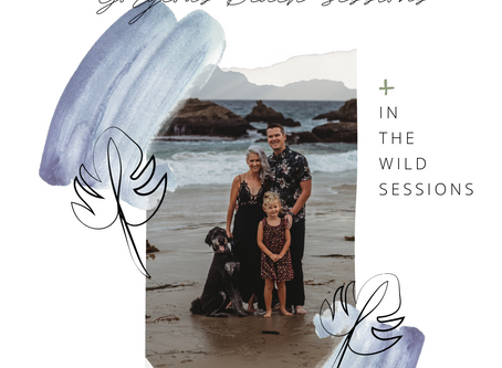 2020 Fall & Holiday Session + Mini Sessions in Orange County