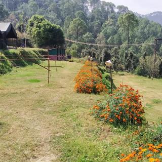 green field nainital camping.jpg