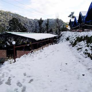 snow view camping nainital.jpg