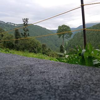 view from camping nainital.jpg