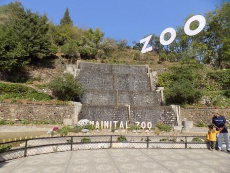 High Altitude Zoo Nainital