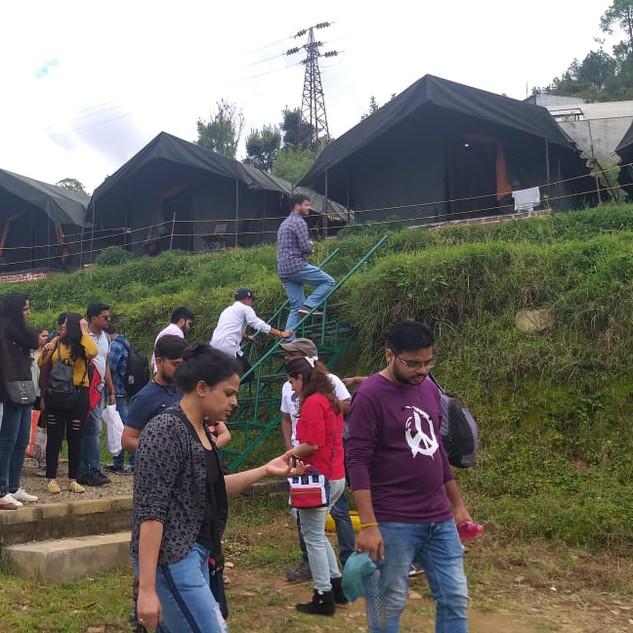 Wild roots camp.jpg