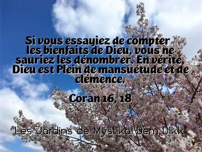 [Le verset du jour] Coran 16, 18-19 : Si vous essayiez de compter les bienfaits de Dieu..