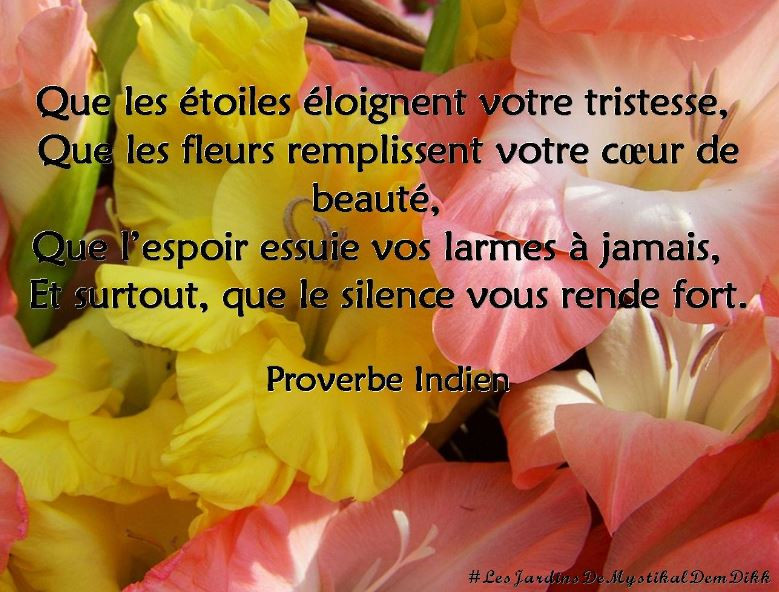proverbes