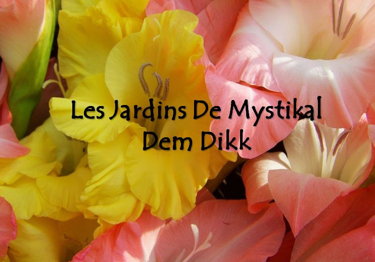 A propos des Jardins de Mystikal Dem Dikk