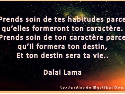Dalaï Lama : Prends soin de tes habitudes..