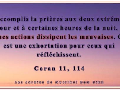 Kitab al Wasâyâ - Paroles en Or, Ibn 'Arabi : De la désobéissance et de Sa séparation (1)