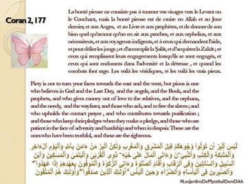 [Le verset du jour] Sourate 2 versets 177 : La bonté  pieuse ne consiste pas à tourner vos visages v