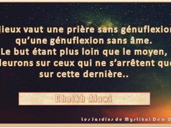 Cheikh Alawi : Mieux vaut une prière sans génuflexion qu'une génuflexion sans âme..