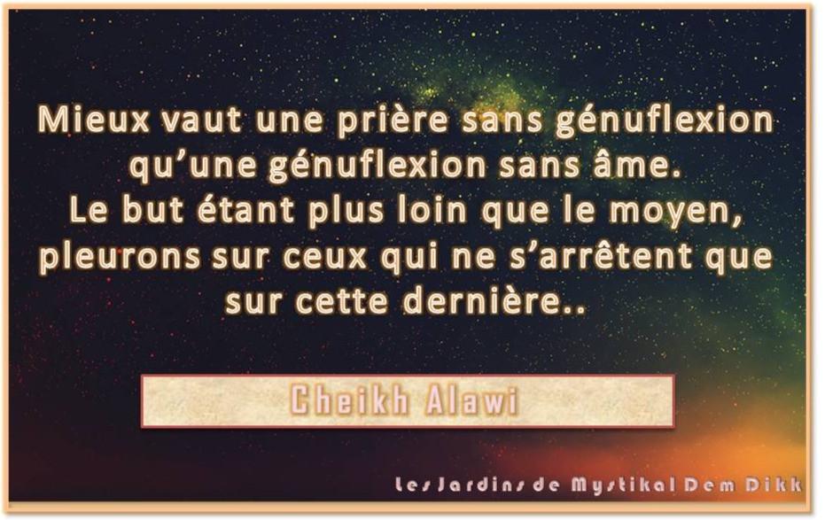 Cheikh Alawi
