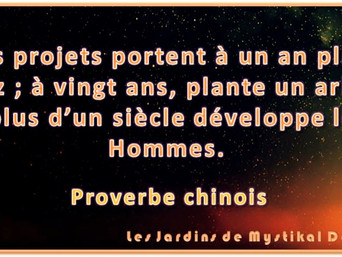 [Proverbe chinois] Si tes projets portent..