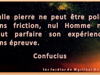 Confucius : Nul Homme ne peut parfaire son expérience sans épreuve.. x Mystikal Dem Dikk