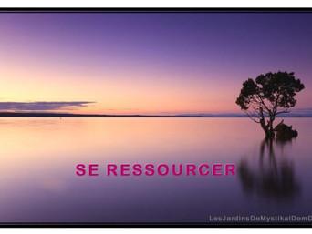 Mystikal Dem Dikk : Se ressourcer - Nature et Méditation