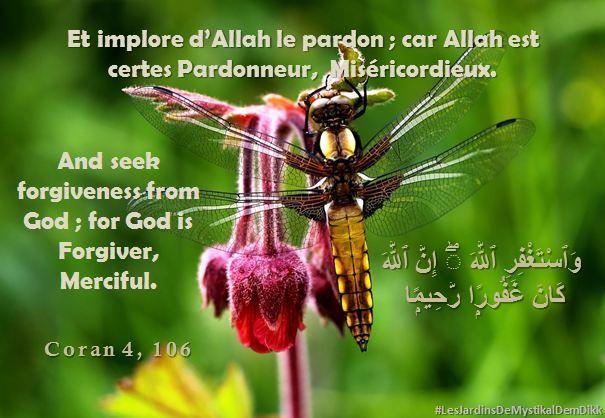 Coran 4, 106