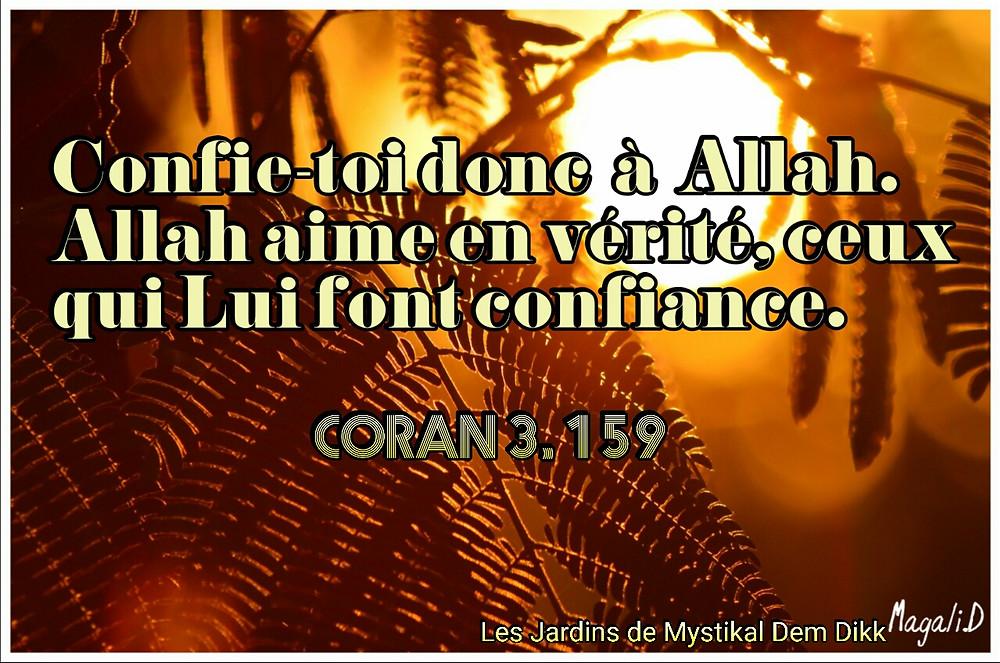 Coran 3, 159