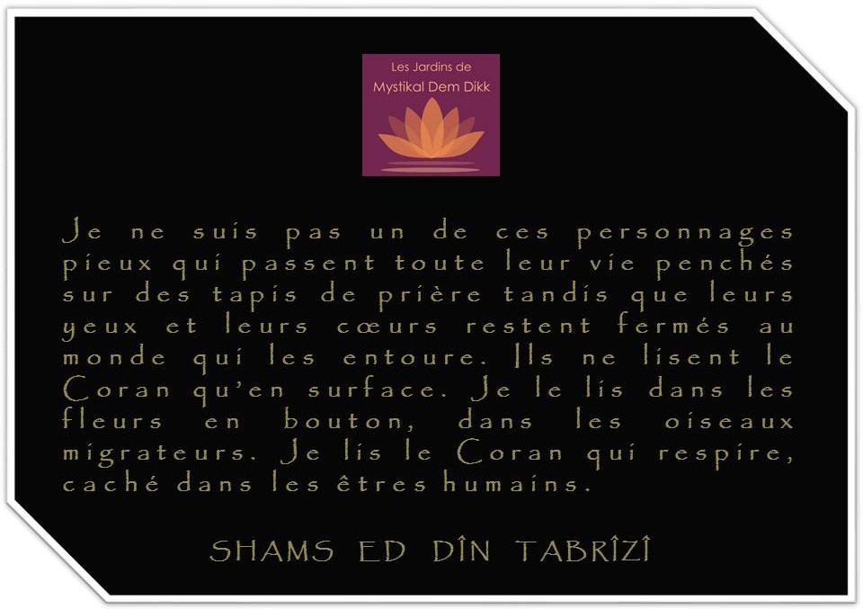 Shams ed Din Tabrîzî
