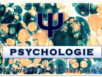 [Psychologie sociale] Les effets de la catégorisation sociale