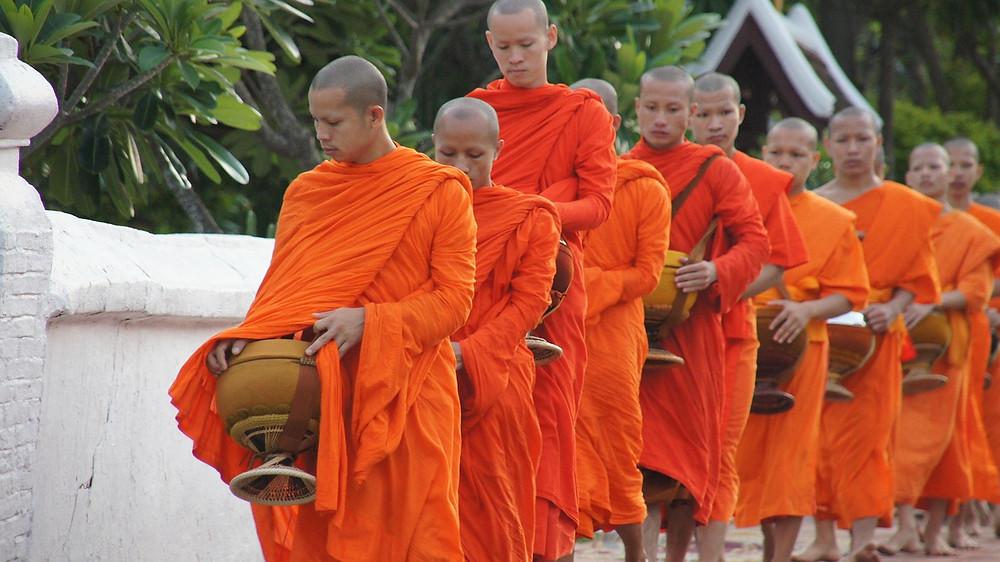 Photo moines