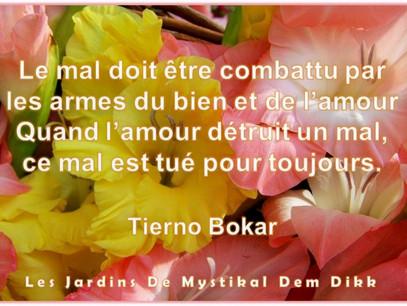 Tierno Bokar : Le mal doit être combattu par les armes du bien et de l'amour..