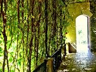 Jardins de l'Alcazar - Séville
