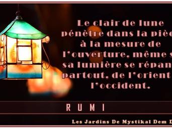 Rumi : Le clair de lune pénètre dans la pièce à mesure de l'ouverture..
