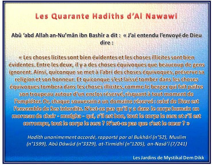 Les 40 hadiths de l'imam an Nawawi : Sur le licite, l'illicite et l'équivoque