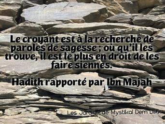Abd el-Hafîd Benchouk : Sur la sagesse..