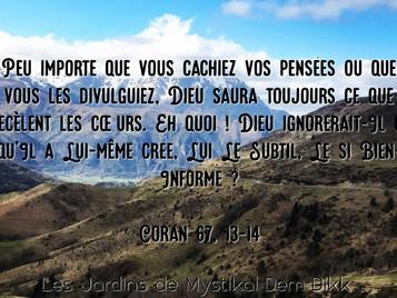 [Le verset du jour] Quant à ceux qui craignent leur Seigneur dans Son mystère.. Coran 67, 12 à 15