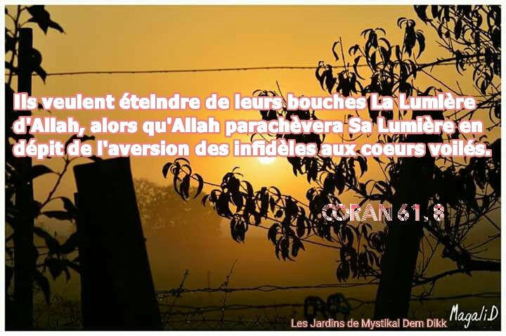 Coran 61, 8