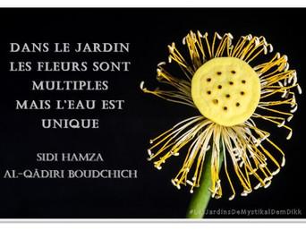 Sidi Hamza AL-QÂDIRI BOUDCHICH : Multiplicité et Unité