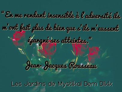 Jean-Jacques Rousseau : En me rendant insensible à l'adversité ils m'ont fait plus de bien..
