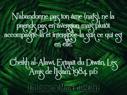 Cheikh al-Alawi : N'abandonne pas ton âme (nafs), ne la prends pas en aversion..