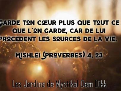 [Bible] Proverbes 4, 23 : Garde ton cœur plus que tout ce que l'on garde..
