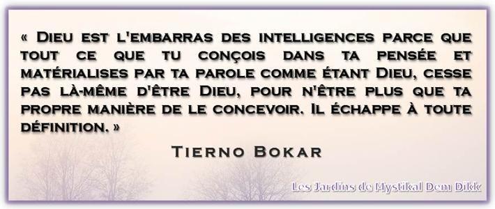 Présentation du livre : Vie et enseignement de Tierno Bokar - Le Sage de Bandiagara d'Amadou Hampâté Bâ