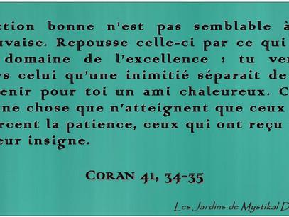 Abd el-Hafîd Benchouk : L'action bonne n'est pas semblable à la mauvaise.. Coran 4, 34-35