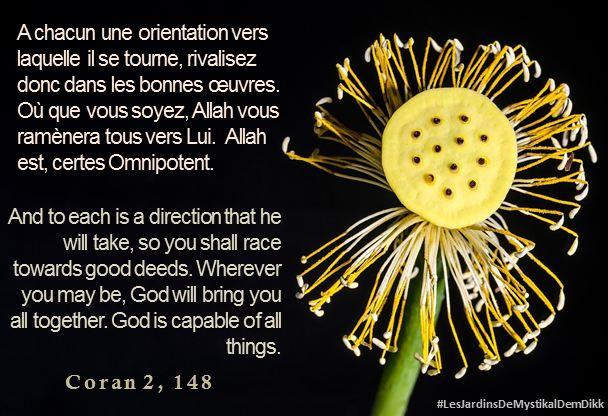 Coran 2, 148