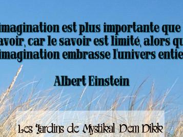 Albert Einstein : Du pouvoir de l'imagination et du savoir..