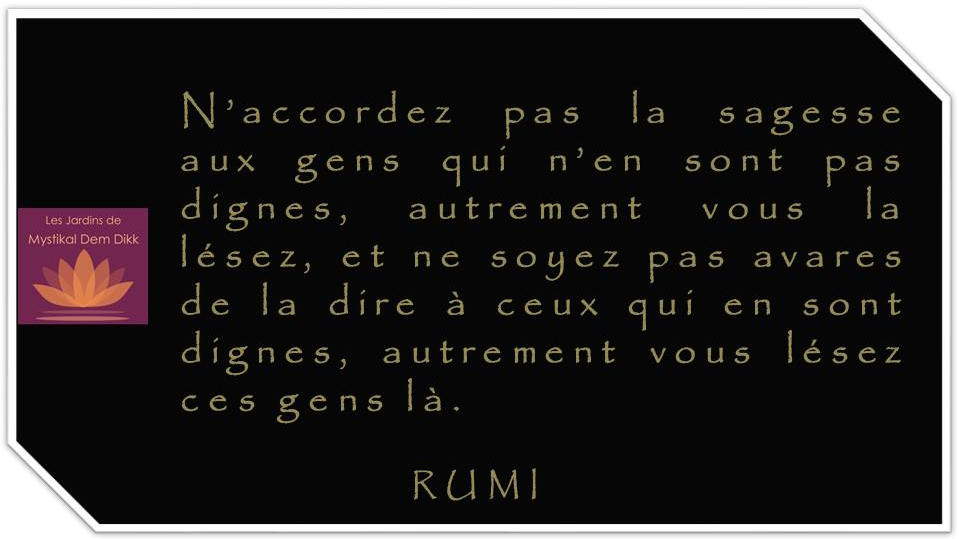 Citations de Rumi